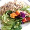 ポルチーニのご飯とハーブサラダ